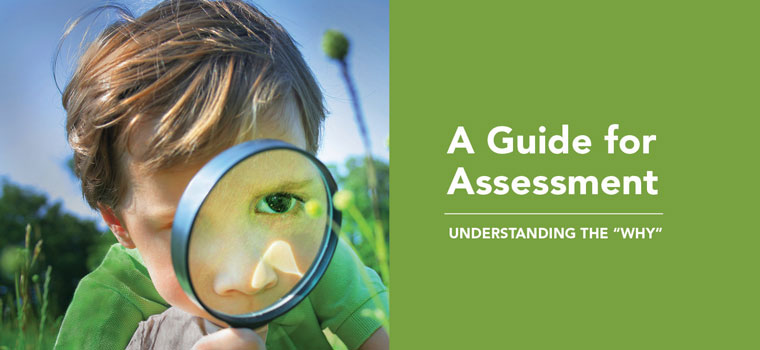 A Guide for Assessment