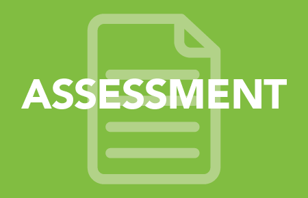 Family Assessment: Assessment Guidelines for Families